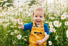A Blue-eyed And Fair-haired Boy Stands In A Flowery Meadow With Chamomile Flowers And Smiles