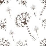 Fototapeta Dmuchawce - Dandelion flowers wildflowers graphic vector hand-drawn illustration. Print textile vintage retro leaves seeds fly coloring book for kids cute cartoon nature plants patern seamless