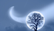 """Lone Dead Tree With Super Full Blue Moon And Comet In The Sky """"Elements Of This Image Furnished By NASA"""""""