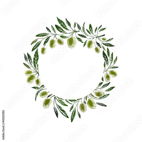 Fotografie, Obraz Olive grove. Green fruit. Vector texture wreath