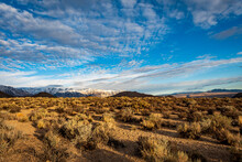 Arid High Desert To Distant Dark Hills And Snowy Mountains Under Morning Sky