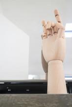 Model Wooden Human Hand Gesture