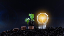Light Bulb With Plants And Coins On Black Scene Ideas To Save Energy And Save Money And Investment.