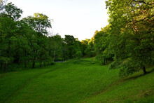 A Green Meadow In A Hilly Area, Surrounded By Trees, At Dusk At Sunset, A Feeling Of Coolness And Tranquility, Only The Upper Branches Of The Trees In The Golden Sunlight Remind Of A Hot Day.