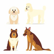 Dogs Collection. Vector Illustration Of Various Breeds Of Dogs, Such As Mini Poodle, Collie, German Shepherd Dog And Maltipoo. Isolated On White.