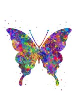 Butterflies Animal Watercolor, Abstract Painting. Watercolor Illustration Rainbow, Colorful, Decoration Wall Art.