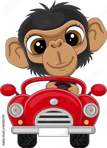 Cartoon baby chimpanzee driving red car