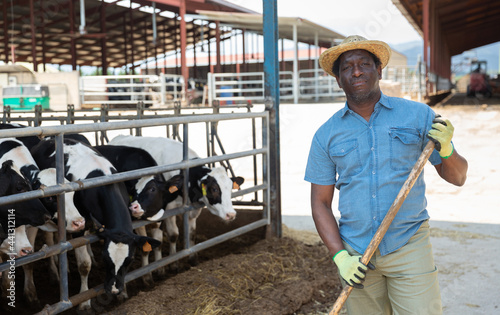 Canvastavla Portrait of a hardworking african american man standing on a livestock farm with
