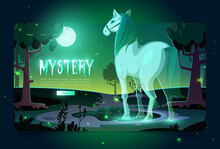 Banner Of Mystery With Glowing Horse Ghost In Dark Forest At Night. Vector Landing Page With Cartoon Fantasy Illustration Of Horse Spirit In Park Or Garden With Trees And Pond