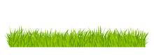 Green Grassland Lawn Field Border Flat Style Design Vector Illustration Isolated On White Background. Cartoon Summer Green Grass Nature Landscape Field.
