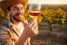Happy Winemaker With Glass Of Wine In Vineyard