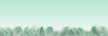 Abstract Summer Banner Design With Tropical Leaves Background