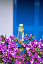 Water Bottle With A Slice Of Lemon Stands On A Metal Fence In Bougainvillea Flowers