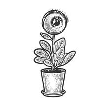 Human Eye Plant Flower Sketch Engraving Vector Illustration. T-shirt Apparel Print Design. Scratch Board Imitation. Black And White Hand Drawn Image.