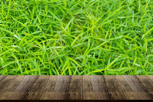 Beautiful Wooden Floor And Green Grass Background