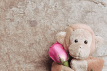 Brown Monkey And Pink Rose For A Lover, Valentine's Day Love Beautiful.