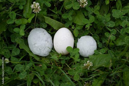 Fototapeta Vergleich Hagelklumpen und Ei, haistones as big as an egg