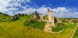 Fototapeta Kwiaty -  Szlak Orlich Gniazd -zamek w Olsztynie koło Częstochowy w południowej Polsce
