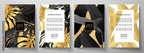 Fotografie, Obraz Luxury tropical cover, frame design set with gold palm branch (Banana leaf, golden Monstera plant) on black