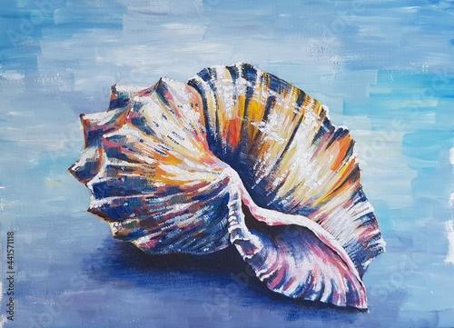 A seashell on a blue background Fototapet