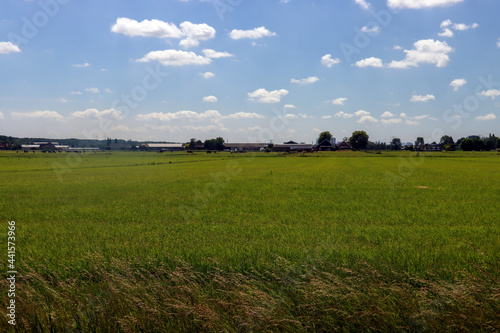Fotografie, Obraz The lowest polder in the Netherlands Zuidplaspolder between Gouda and Rotterdam