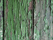 Background Of Old Wooden Planks With Paint Residues And A Sitting Fly