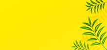 HD Summer Background With Clean Yellow Color And Tropical Green Leaves. Vector Illustration Of Summer Background And Can Editable