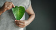 Leinwandbild Motiv Green Energy, Renewable and Sustainable Resources. Environmental and Ecology Care Concept. Close up of Hand Holding a Heart Shape Green Leaf on Chest