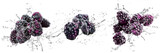 Fresh Blackberries with water splash on isolated white background