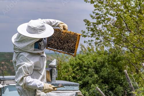 Foto Beekeeper man is working with beehives wearing protective clothing
