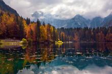 Magnificent Colors Of Autumn