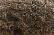Kamienne tło, tekstura ściana skalna.