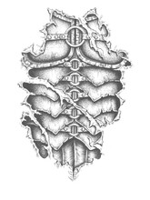 Roman Armor Design