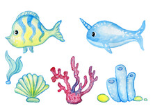 Set Of Cartoonish Marine Animals Coral, Fish, Narval, Shell, Seaweed Watercolor By Hand