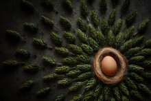 High Angle View Of Easter Egg In Nest On Plant