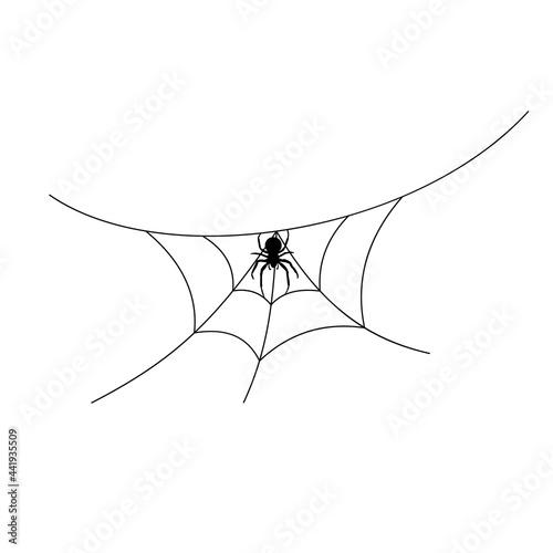 Scary spider web background Fototapet