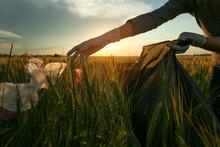 Woman Collecting Garbage In Wheat Field, Closeup