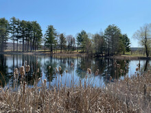 New Hampshire, North America. 2021.  Early Springtime A Lake Surrounded By Trees In The New Hampshire Countryside. USA.