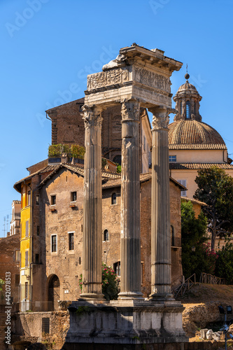Fotomural Temple of Vespasian and Titus in Rome