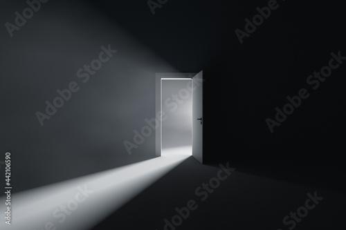 Fotografija Open door to a room with bright light