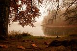 Jesienny krajobraz, jezioro w środku kolorowego lasu.