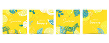 Collection Of Summer Background Set With Leaves,lemon,zebra On Yellow Background
