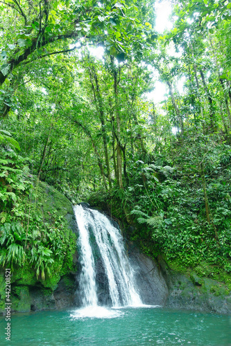 Fotografie, Obraz Crayfish Waterfall or La Cascade aux Ecrevisses, at the National Park of the french caribbean island Guadeloupe, West Indies