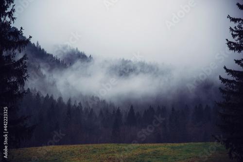 Canvastavla Nature landscape photos and background