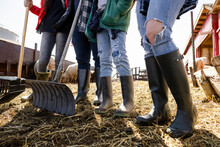 Low Section Family In Rubber Boots Cleaning Sheep Pen On Farm