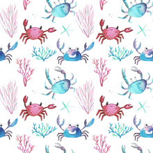 Watercolor Pattern, Crabs And Shells