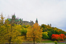 A Distant View Of The Parliament Hill. Green Grass, Red Leaves, White Clouds.