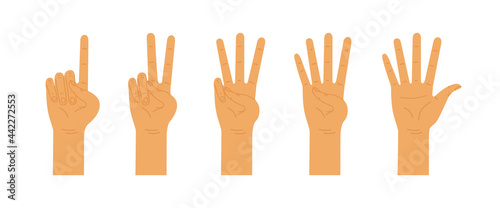 Obraz na plátně Hands counting from one to five