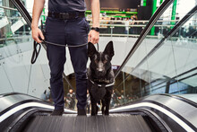 Security Officer With Police Dog Using Escalator At Airport