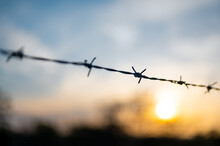 View On Barbed Wire